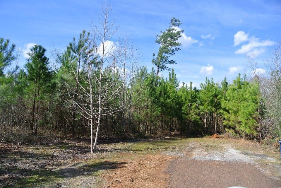 250 Woodland Oak Drive, Garrison, TX 75946