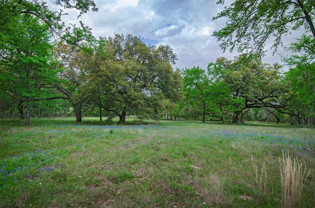Tract 1 & 2 Lone Star Farm, Washington, TX 77880