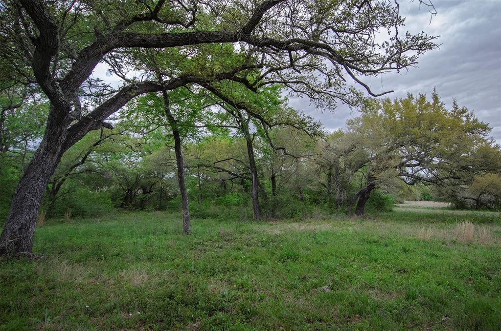 Tract 2 & 3 Lone Star Farm, Washington, TX 77880