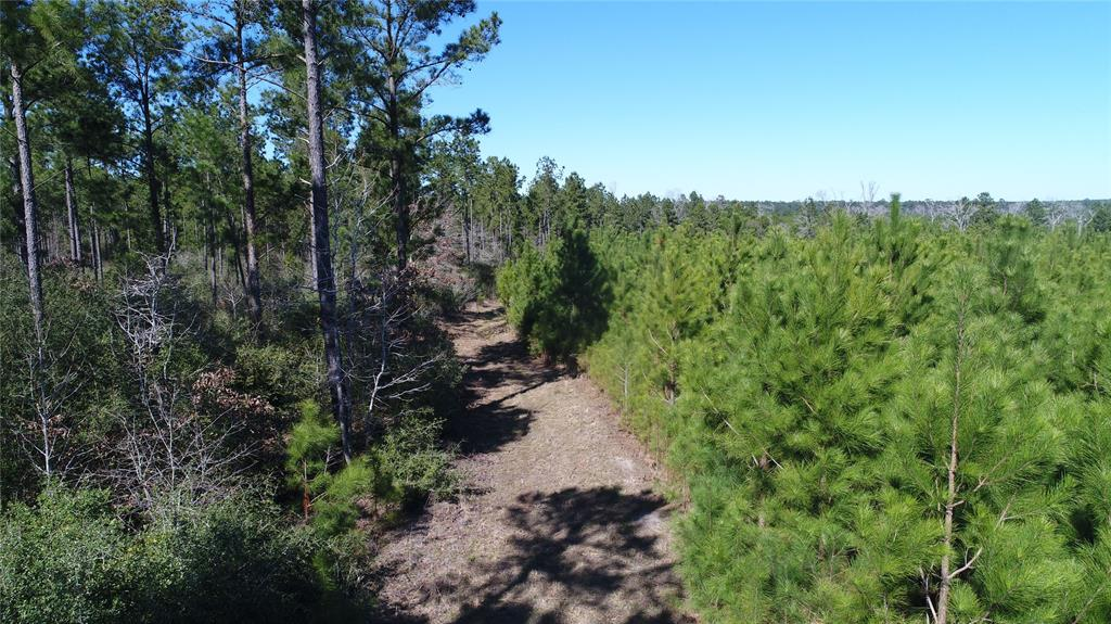 TBD CR 4505, Crockett, TX 75835