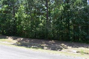 10 n forest drive, huntsville, TX 77340