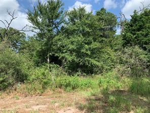 0 Pine, Somerville TX 77879