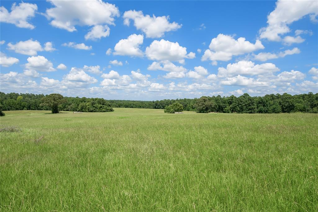 Meticulously maintained 360-acre ranch w/ breathtaking views in Grimes County! Conveniently located between Houston and College Station, yet offers seclusion and privacy w/ its blend of open-to-wooded ratio. Multiple hilltops w/ estimated 70 ft of elevation changes, stunning views, & mature trees. 2 access points from the county road. Amenities - water well & electricity on-site; 3 stock ponds; cattle working pens; hay storage pens; cross fencing; rock road from CR to center of property. Fully functional cattle ranch has established solid grasses throughout due to rotational grazing, weed spraying, fertilizing & conservative grazing. Some of the best deer & duck hunting in the area! Strict Whitetail mgmt during the past 8 yrs has promoted good herd health & antler selection. Quality fencing throughout, 3 hay meadows provide ample hay for livestock. Current ag exemption in place w/ option for timber/wildlife exemption. Tracts like this don't hit the market often, make your appt. today!