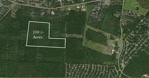 100 A Acres Jenning Branch, Livingston, TX 77351