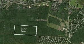 100 B Acres Jenning Branch, Livingston, TX 77351