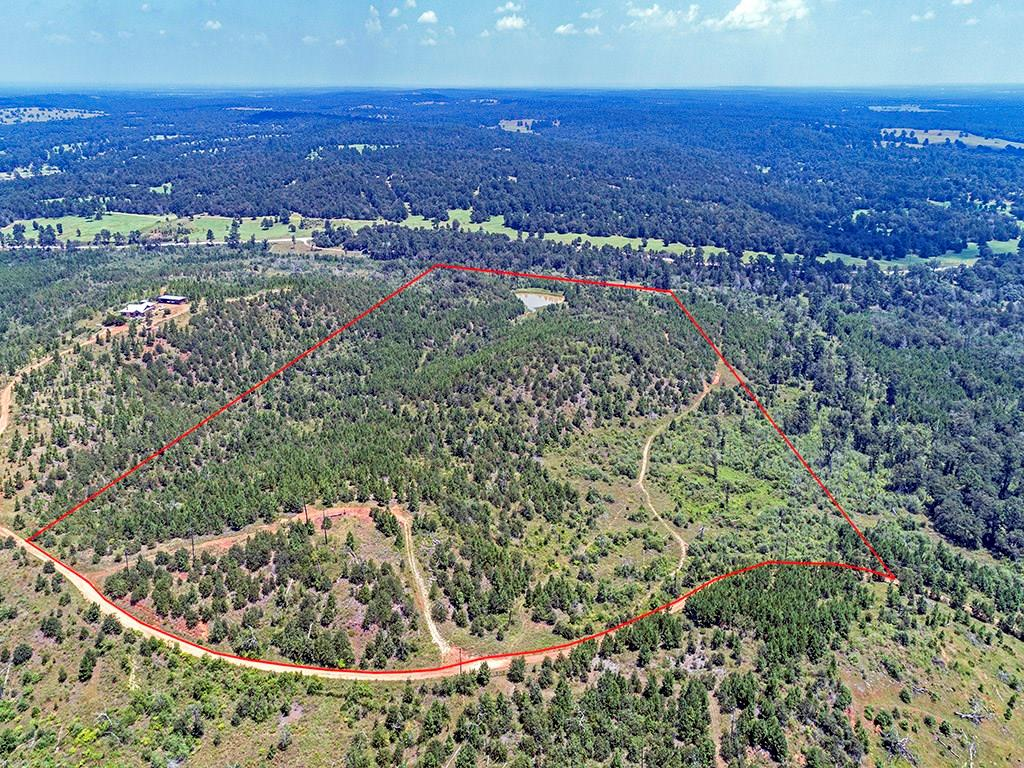 It feels like the top of the world when you park on the circular drive and look out over this property. One of the higher spots in Caldwell County, this property offers a building site with big views in all directions. Young pine regrowth everywhere. Property has a seasonal creek, ridgeline, large stock tank ( pond ) and a large portion of the land that was at one point open pasture with lovely sandy loam soil. Water & electric at the road. Will need septic. In small gated community.