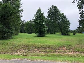 25 North Forest, Huntsville, TX, 77340