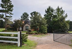 12691 Timberline Estates Drive, Willis, TX 77378
