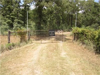 1682 Gotier Trace Road, Paige, TX 78659
