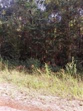 0 Wildwood Lane, Plantersville, TX 77363