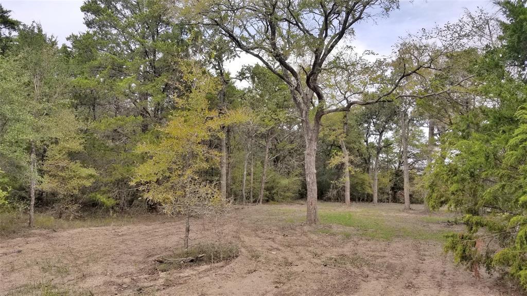 2490 Goehring Road, Ledbetter, TX 78946