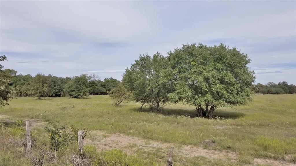 2670 Goehring Road, Ledbetter, TX 78946
