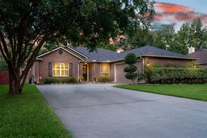28910 Pine Forest