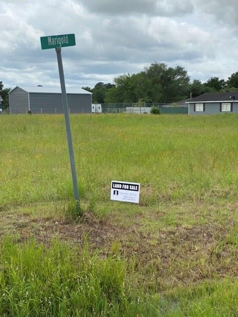 Lot 96 Alleda Road, Prairie View, TX 77446
