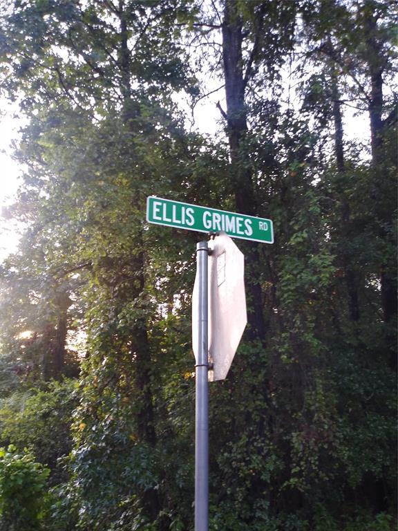 0 Ellis Grimes Road, Goodrich, TX 77335