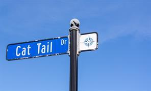 26441 Cat Tail, Galveston, TX, 77554
