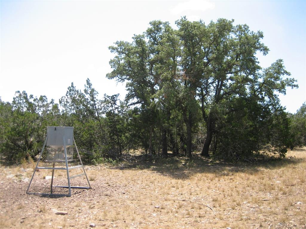 195 Headwaters Drive, Hunt, TX 78058