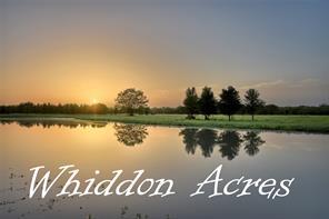 8600 Whiddon, Chappell Hill, TX, 77426