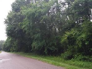 tbd pinebrook, new caney, TX 77357