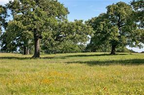 tbd +/-157 acres fm 908, caldwell, TX 77836