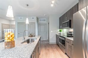 11576 pearland parkway #8301, houston, TX 77089