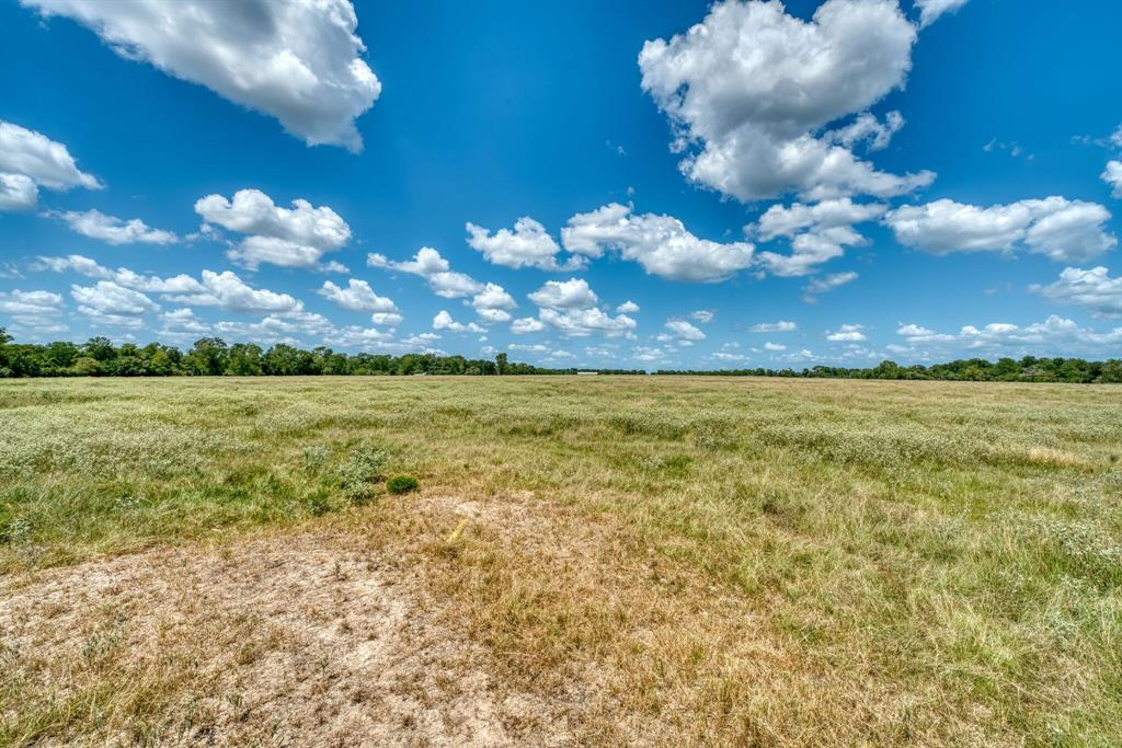 TBD Farm to Market 2346, Midway, TX 75852
