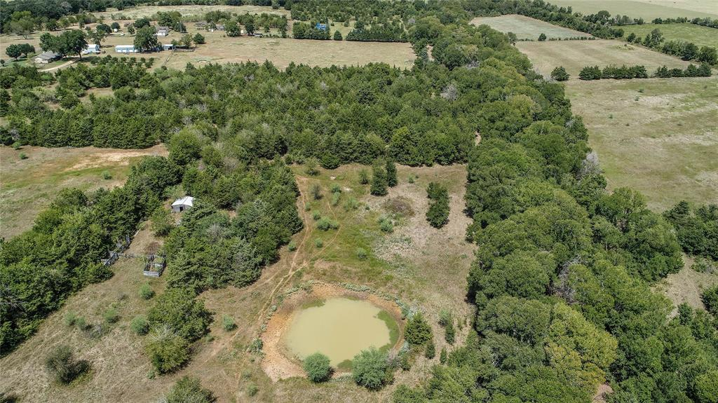 000 (39.62 acres) CR 114, Caldwell, TX 77836