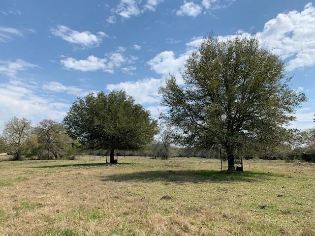 1608 County Road 130, Ledbetter, TX 78946