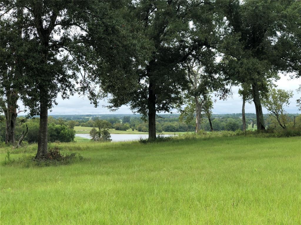 7392 Pecan Hills, Plantersville, TX 77363