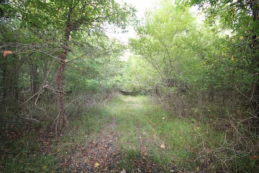 0 Sawmill Lake Road, Pledger, TX 77468