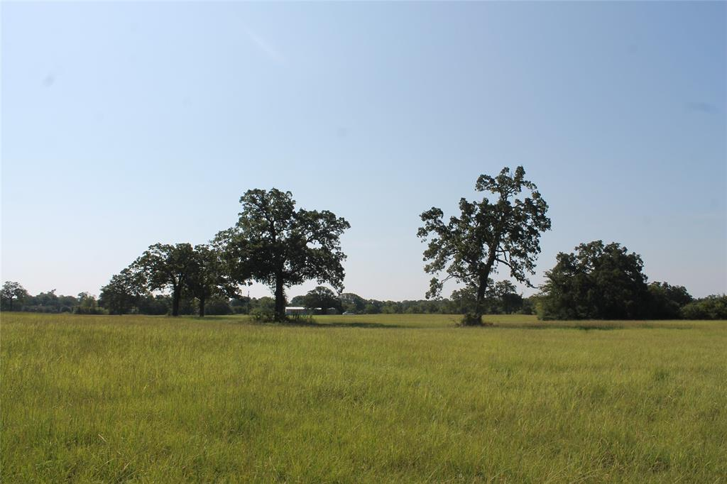 8297 County Road 103, Iola, TX 77861