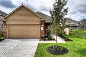 16923 Devon Dogwood Court, Richmond, TX 77407