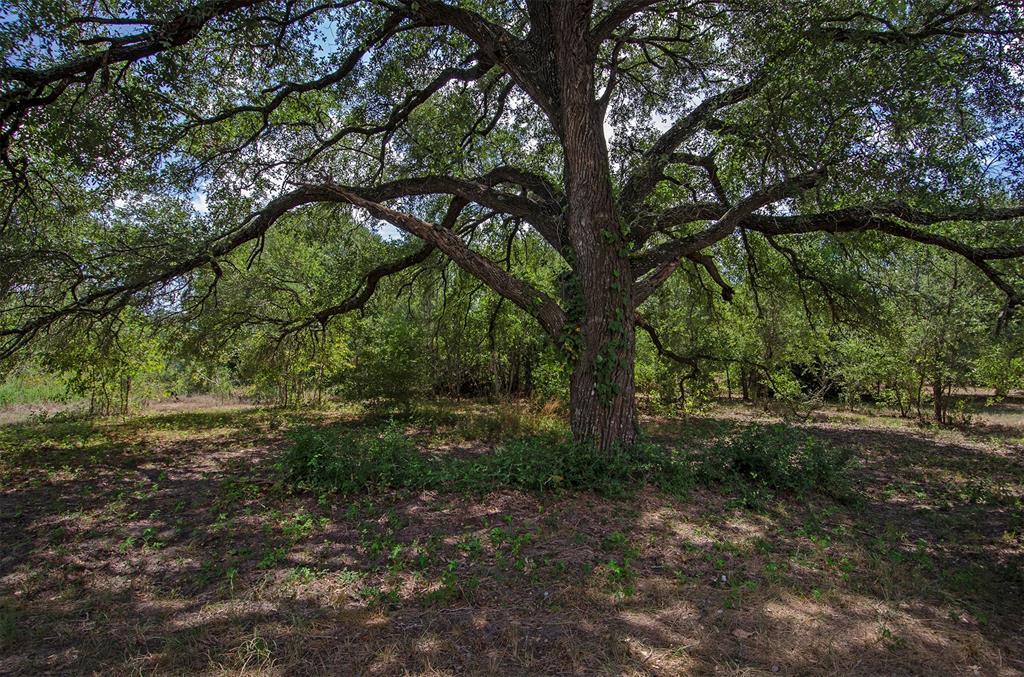 9361 Lone Star Road, Washington, TX 77880
