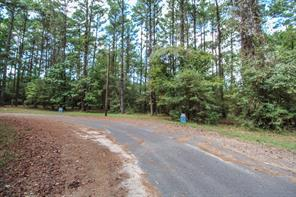 TR 20 Grand Pine Loop, Livingston, TX, 77351