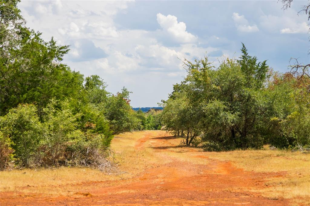TBD (150 Acres) County Road 430, Dime Box, TX 77853