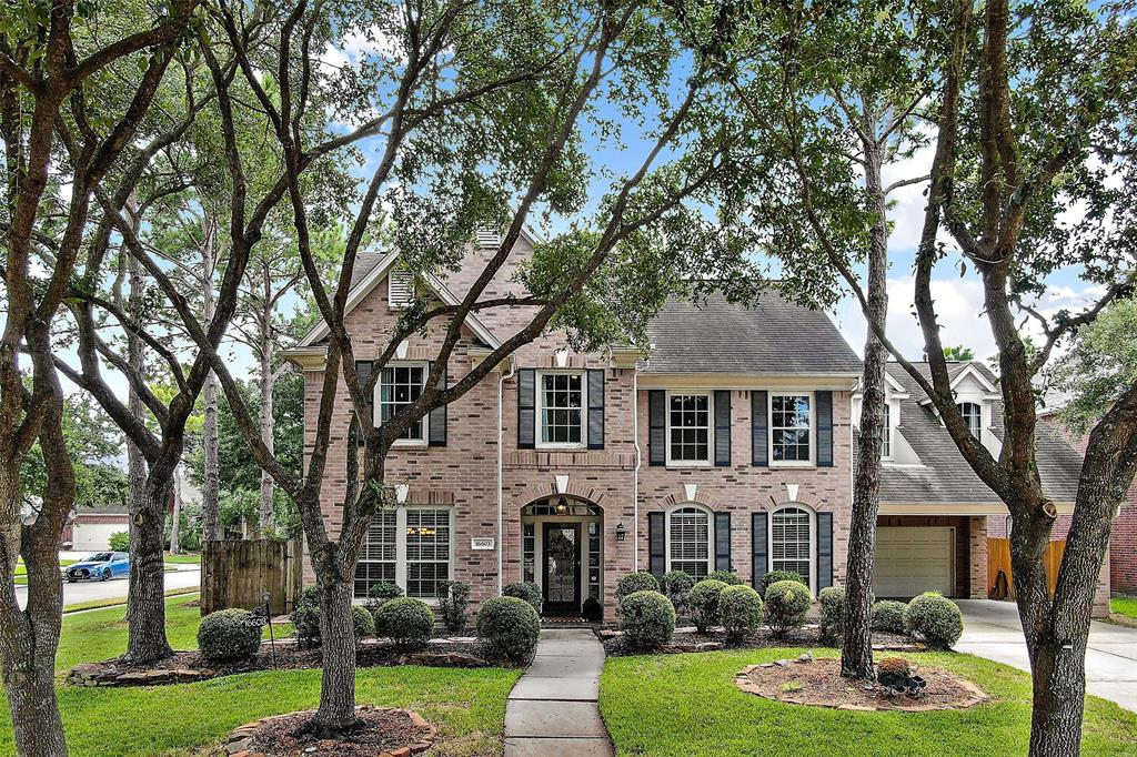 16603 Blue Vista Drive, Houston, TX 77095