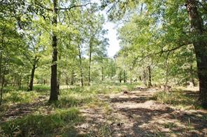 TBD County Road 112, Centerville TX 75833