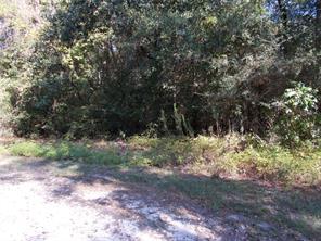 Lot 6 Woodside Drive, Plantersville, TX 77363