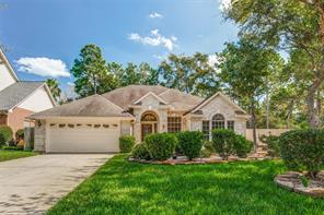 2 Greenvine, The Woodlands TX 77382