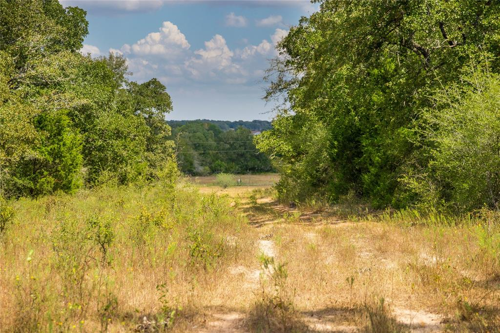 TBD (336.15 Acres) County Road 140, Caldwell, TX 77836
