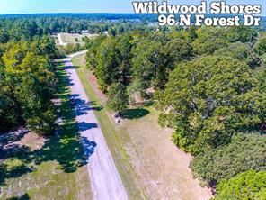 96 n forest drive, huntsville, TX 77340