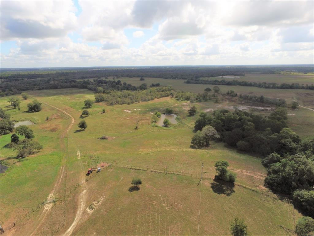 Beautiful track of land that offers a hilltop homesite with fantastic views and located just 12 mi from Hwy 6 & Briarcrest Dr. The homesite has onsite electricity, well and a Wickson water line that runs in front of the property. The property has 4 tanks with 3 of them being located so that they can be replenished by the 2 artesian wells and the homesite well. The property is fenced/cross fenced and the fencing is in excellent condition. The property offers great hunting with several fine bucks having been taken over the years.