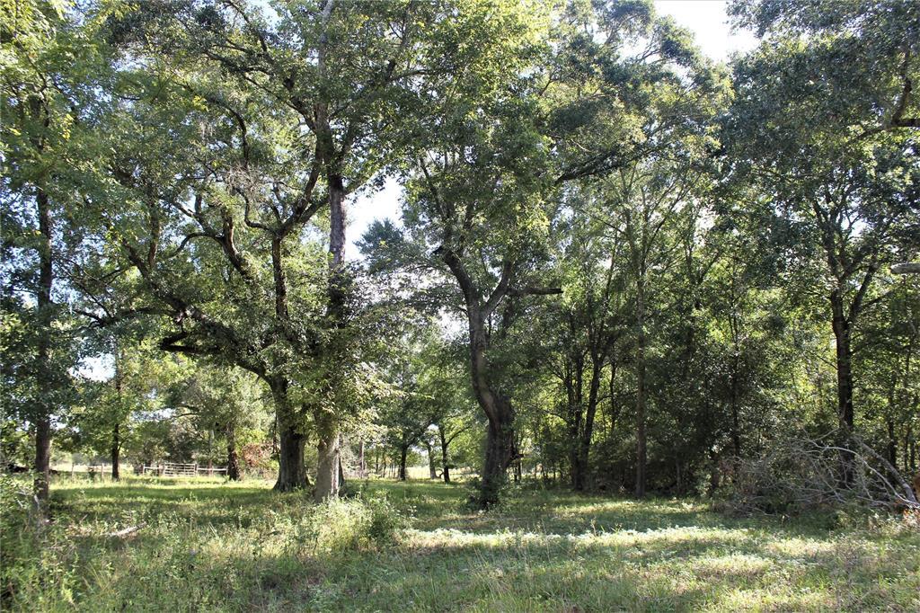 00 Lone Star Rd Road, Washington, TX 77880