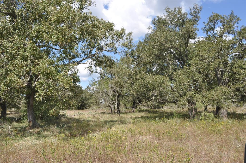 Located Southwest of Gonzales this 55+ acre tract features rolling terrain, pond, scattered trees, and a water well. This property is secluded and ideal for weekend or recreational use. Wildlife that inhabit the property include whitetail deer, hogs, turkey, doves, and ducks.