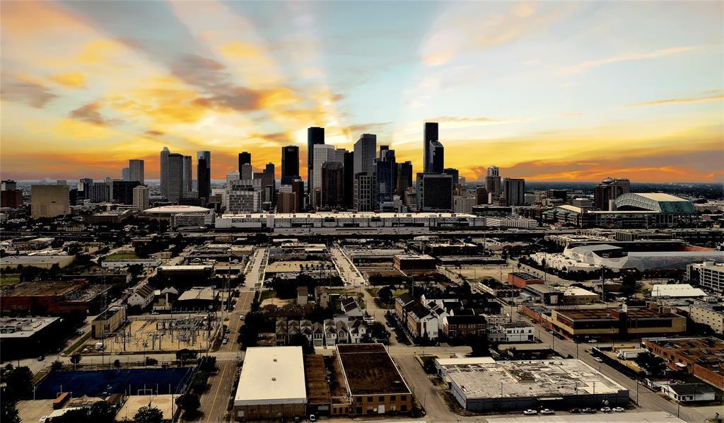 1103 Paige Street, Houston, TX 77003