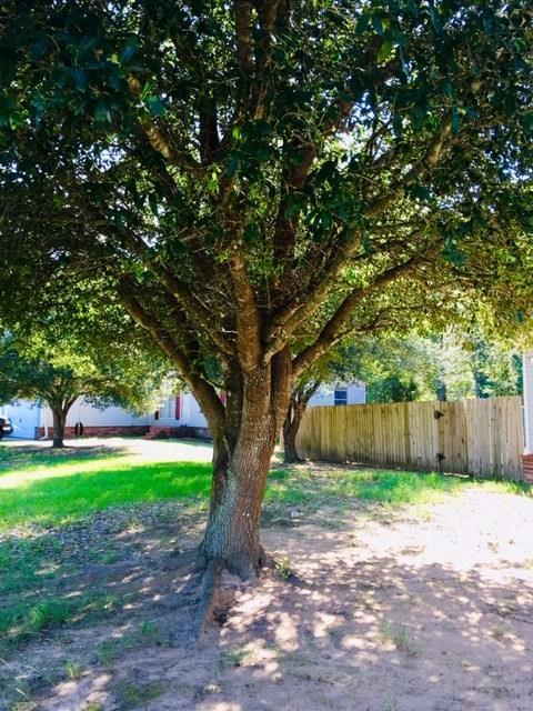 16286 Wild Oak Lane