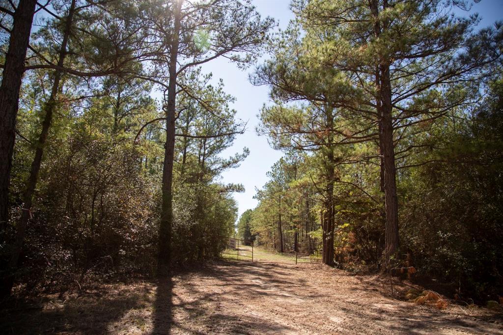 0 County Road 3585, Trinity, TX 75862