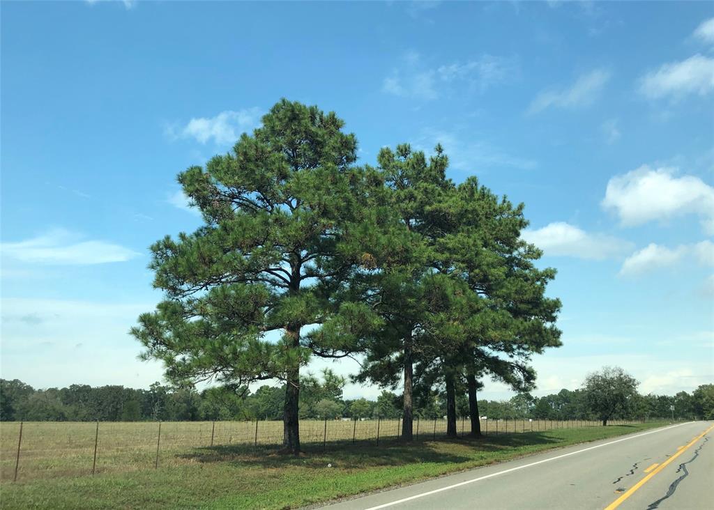 TBD Fm 2793 Road, Huntsville, TX 77358