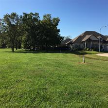 32711 Waterfowl Drive, Fulshear, TX 77441