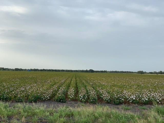 Approximately 63 +/- acres prime row crop land.  Well drained and located in Lavaca County.  Paved road frontage.  Partial minerals available.